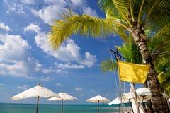 Paraguas blancos cerca de la palmera y de la bandera amarilla imagenes de archivo