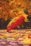 Paraguas de hojas de arce Otoño Arco iris de hojas gradiente imagenes de archivo