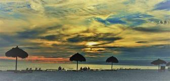 Paraguas de la palma del Golfo de México de la playa de ciudad de Panamá cerca de ciervos pintorescos de la puesta del sol fotografía de archivo