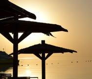 Paraguas de Palm Beach en la puesta del sol imagenes de archivo