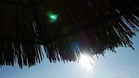 Paraguas del salón del sol almacen de metraje de vídeo