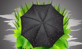 Paraguas e hierba verde Fotografía de archivo