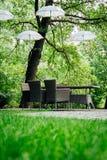 Paraguas en el jardín en los árboles Fotografía de archivo