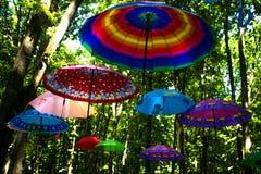 Paraguas en el más forrest Foto de archivo libre de regalías