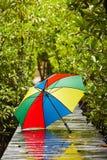 Paraguas en lluvia Foto de archivo libre de regalías