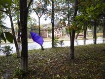 Paraguas quebrado Fotografía de archivo libre de regalías