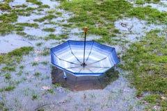 Paraguas rayado azul al revés que flota en hierba inundada en a Fotografía de archivo
