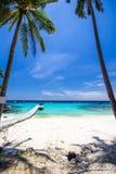 Paraguas y sillas blancos bajo árbol de coco Fotografía de archivo