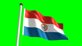 Paraguay flag stock video