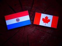 Paraguay flaga z kanadyjczyk flaga na drzewnym fiszorku odizolowywającym zdjęcia stock