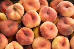 Paraguayo heerlijk fruit - Prunus persica var platycarpa royalty-vrije stock fotografie