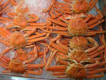 Paralithodeskamchatikus (koningskrab) Royalty-vrije Stock Foto