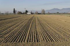 The parallel lines of Italian campaign. View of the parallel lines of Italian campaign Stock Photo