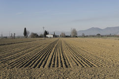 Parallel lines of Italian scenery. View of parallel lines of Italian scenery Stock Photography