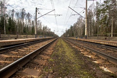 Parallel railway tracks. Parallel to the railway tracks at a station in the countryside Royalty Free Stock Photos