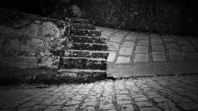 Parallelepipeden täckte gatan och steniga moment i svartvitt Arkivfoto