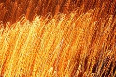 Paralleler Leuchtehintergrund des Feuers Stockfoto