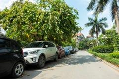 Parallella bilar som parkerar på gatan med gröna träd fotografering för bildbyråer