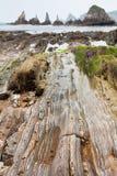 Parallelle rotslijnen in een steenstrand stock fotografie
