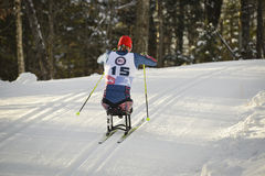 Paralympic cross country ski racer Royalty Free Stock Photos