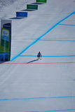 Paralympic Downhill Skiing Stock Photography