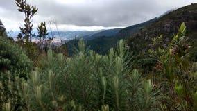 ¡Paramo de Bogotà del paisaje Fotografía de archivo libre de regalías