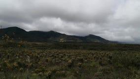 Paramo en las montañas andinas del parque nacional de Purace en Colombia metrajes