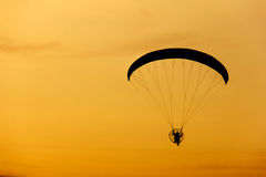 Paramotor / paraglider flying in the sky on sunset sky Stock Image