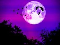 paramotor volgt vogels en super maan die in lichte nacht vliegen royalty-vrije stock foto