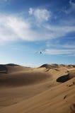 Paramotoring över i öknen Arkivfoton