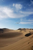 Paramotoring over in the desert. Filmed in China's gansu dunhuang,a paramotoring in the sky Stock Photos