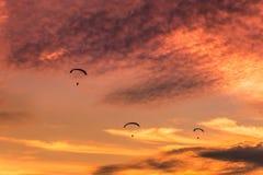 Paramotors  flying on sunset Stock Photos