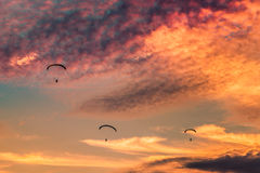 Paramotors flying on sunset Royalty Free Stock Image