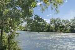 Parana River at Iguazu Falls Royalty Free Stock Photo