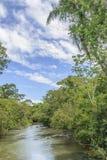 Parana River at Iguazu Park Royalty Free Stock Images