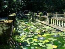 Paranella公园一个美丽的喷泉在澳大利亚 免版税图库摄影