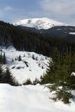 Parang. Carpathian Mountain view from Groapa Seaca area Royalty Free Stock Photos
