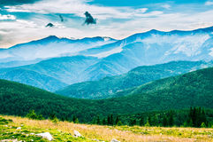 The Parang Mountains I. Simply awesome!Simply Romania! Simply...Parang Mountains Royalty Free Stock Image