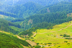 Parang Mountains, Romania. Landscape of Parang Mountains, Romania royalty free stock images
