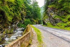 Parang Mountains, Romania Royalty Free Stock Photos