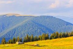 Parang Mountains, Romania Royalty Free Stock Photography