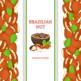 Paranoot verticale naadloze grens Vectorillustratie met samenstelling van een heerlijk Braziliaans nootfruit in shell gehele sh Royalty-vrije Stock Foto