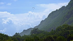 Paraplan over groene berg stock video