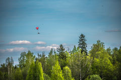 Paraplane in the sky above the forest.  Stock Photo