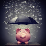 Paraplu die de besparingen van het spaarvarken beschermen tegen belasting Stock Afbeelding