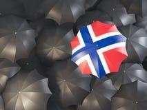 Paraplu met vlag van Noorwegen stock illustratie
