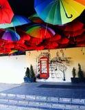 Paraplu's heldere kleuren Stock Fotografie