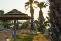 Paraplu's, zitkamerstoelen, palmen op het strand Stock Foto's