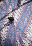 Paraplu/Paraplu van stof, Aziatisch patroonontwerp wordt gemaakt dat Stock Afbeelding