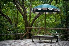 Parapluie dans la forêt de jungle sur la surface en bois Image libre de droits